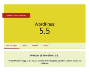 Wordpres 5.5