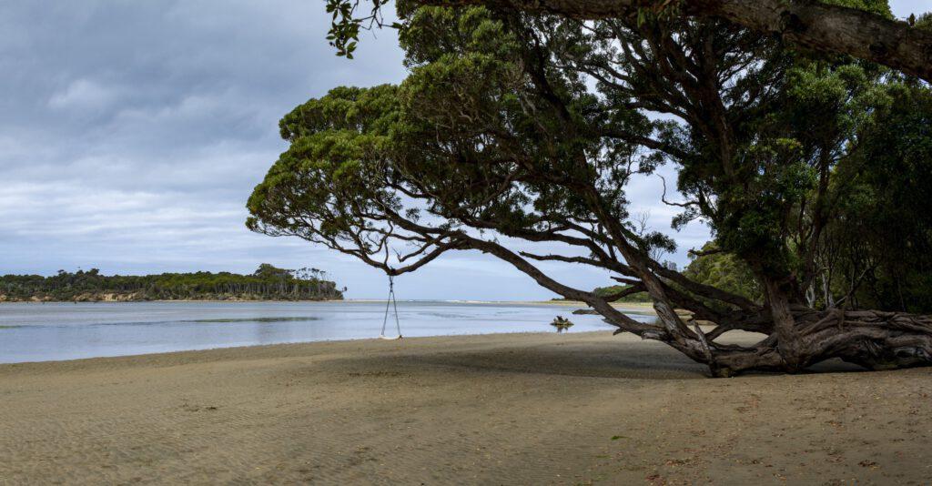 New Zealand - Tahakopa River - The Caitlins - Pacific Ocean - Waikawa